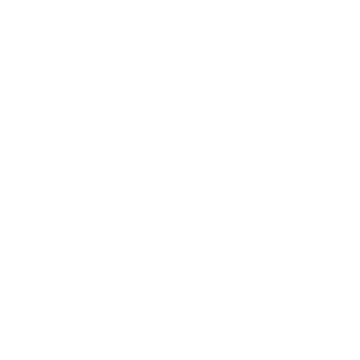 Leos Group Holding